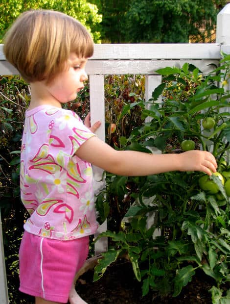 gardening, go local, farm to table, eating locally, gardening with kids