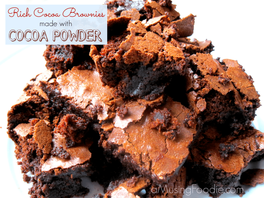 rich chocolate brownies, brownies made with cocoa powder, chewy brownie recipe, chocolate brownie recipe