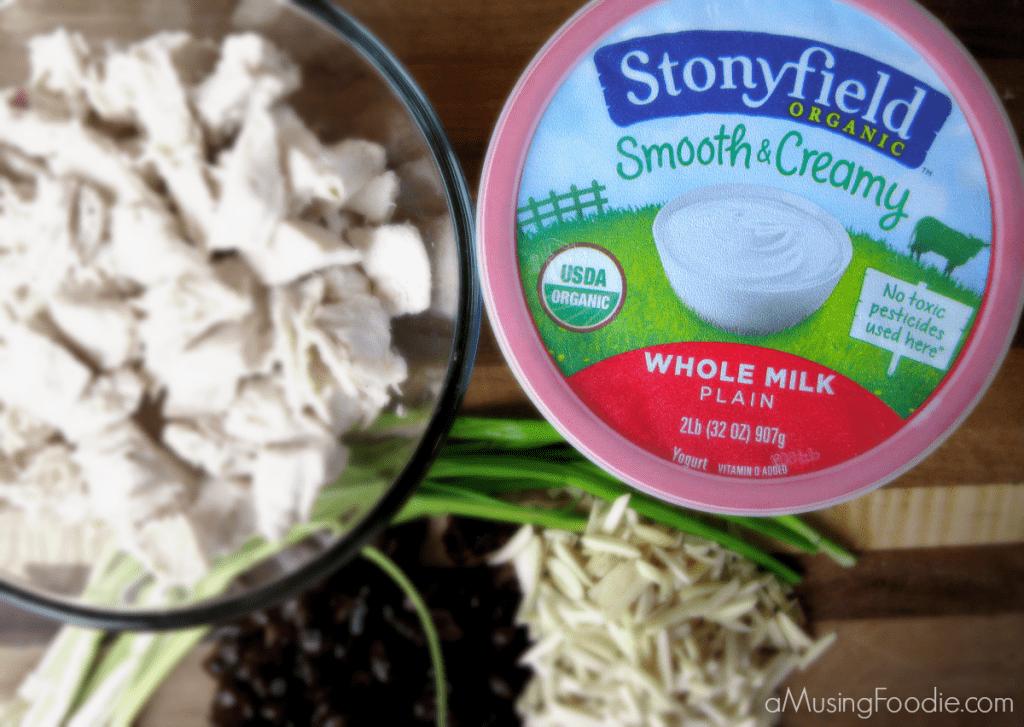 Stonyfield Organic Ambassador