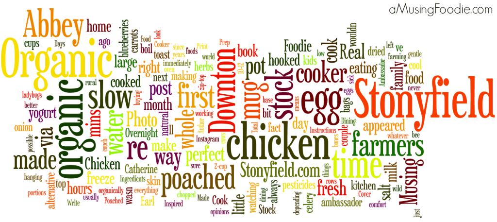 (a)Musing Foodie 2013 Wordle